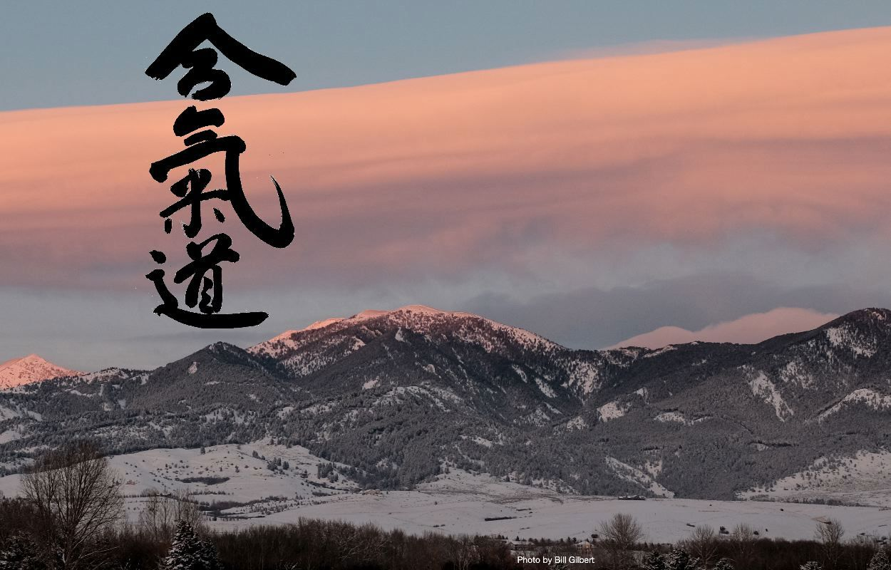Bozeman Aikido photo